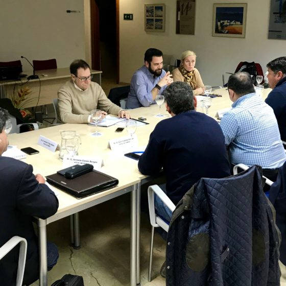 El PSOE adaptará la formación del IFEF a las necesidades de las empresas para que sea efectivo en la creación de empleo