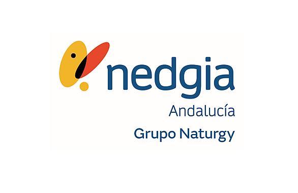 Logotipo Nedgia Andalucía
